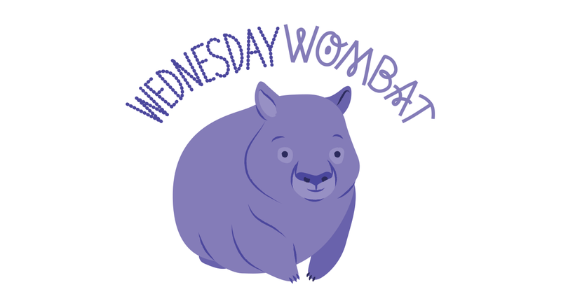 Illustration for article titled Wednesday Wombat