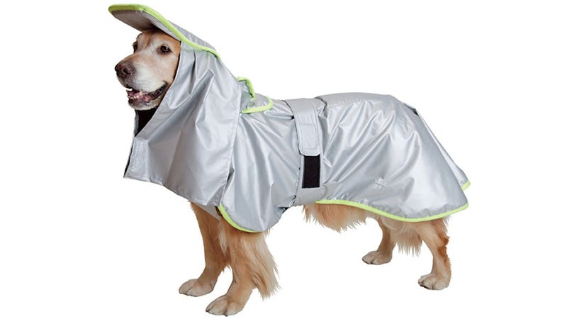 Illustration for article titled Fire and Shockproof Coats Protect Your Pooch During a Natural Disaster