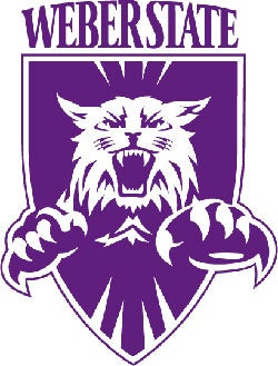 Illustration for article titled Weber State Wildcats