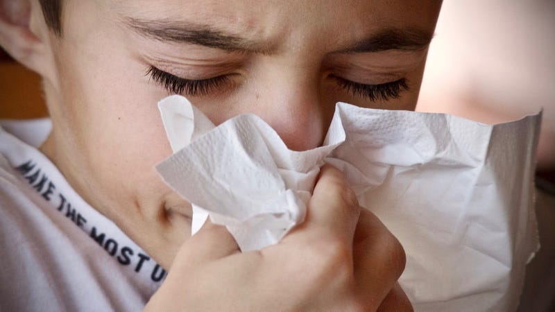 What to do when your allergy meds stop working