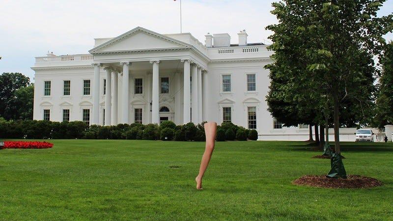 Leg on White House lawn.