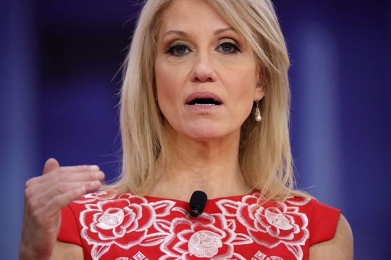 Illustration for article titled Kellyanne Conway Violated Federal Ethics Rules Twice Last Year: Report