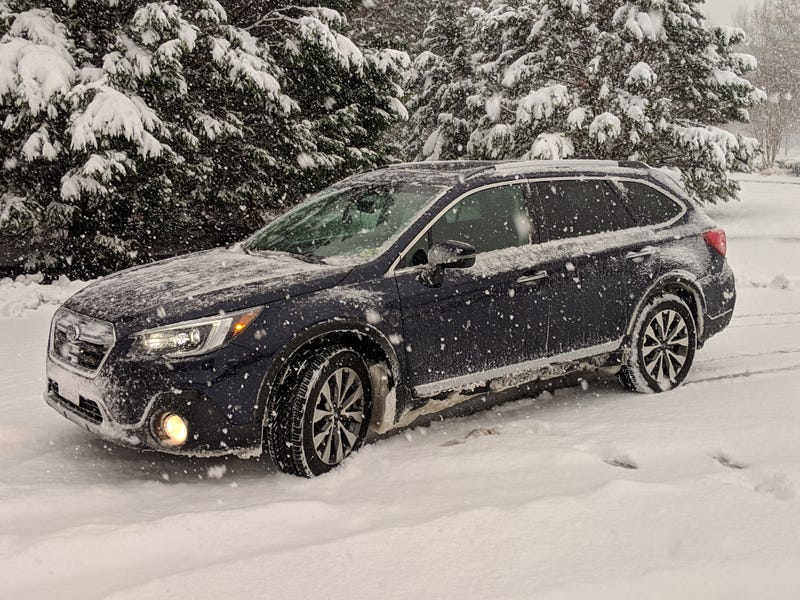 Illustration for article titled Subaru in its natural habitat