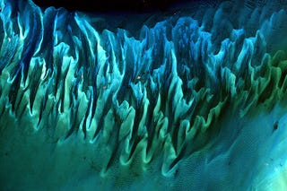 Illustration for article titled Gorgeous underwater sand dunes (or how Earth never ceases to amaze me)