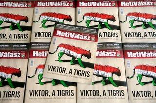 Illustration for article titled Ízléses címlapok a lakájmédiában MCMXVI.: Viktor, a tigris