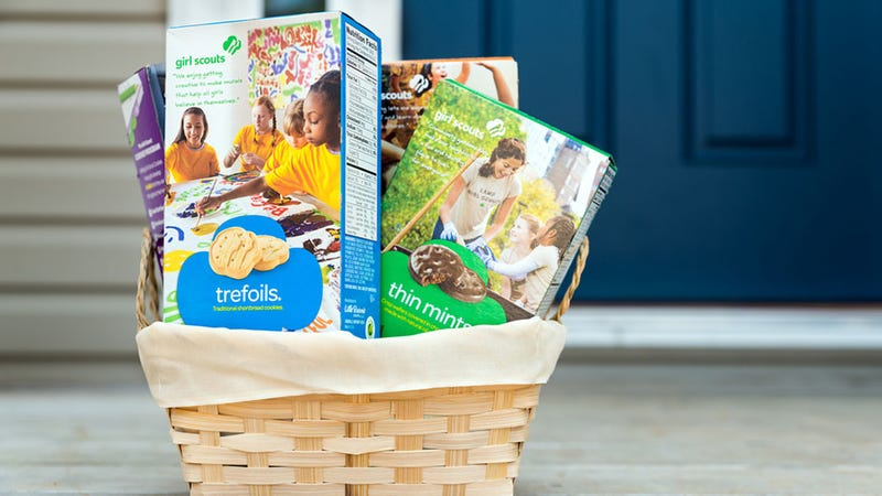 Illustration for article titled Girl Scouts to Release New Cookie Flavors, Blow Your Goddamned Mind