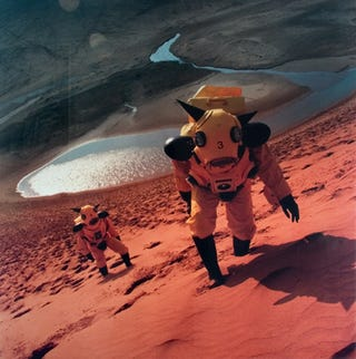 Illustration for article titled Astronauts Tour the Ruins of Earth's Future