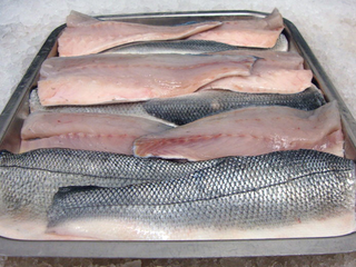 Illustration for article titled Buy Fresh Sea Bass Fish at Reasonable Price Now Online