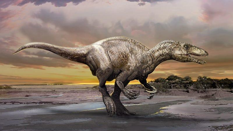 Artist's depiction of murusraptor barrosaensis. (Image: Jan Sovak)