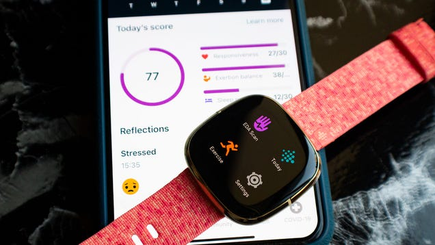 How to Get Started with Fitbit Premium (and Why You d Want To)