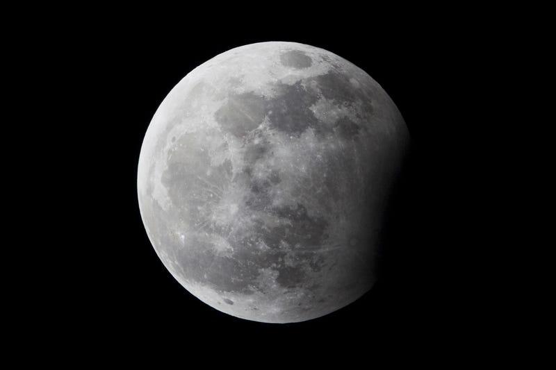 Illustration for article titled ¿Cómo y dónde se verá el eclipse de Luna de hoy?