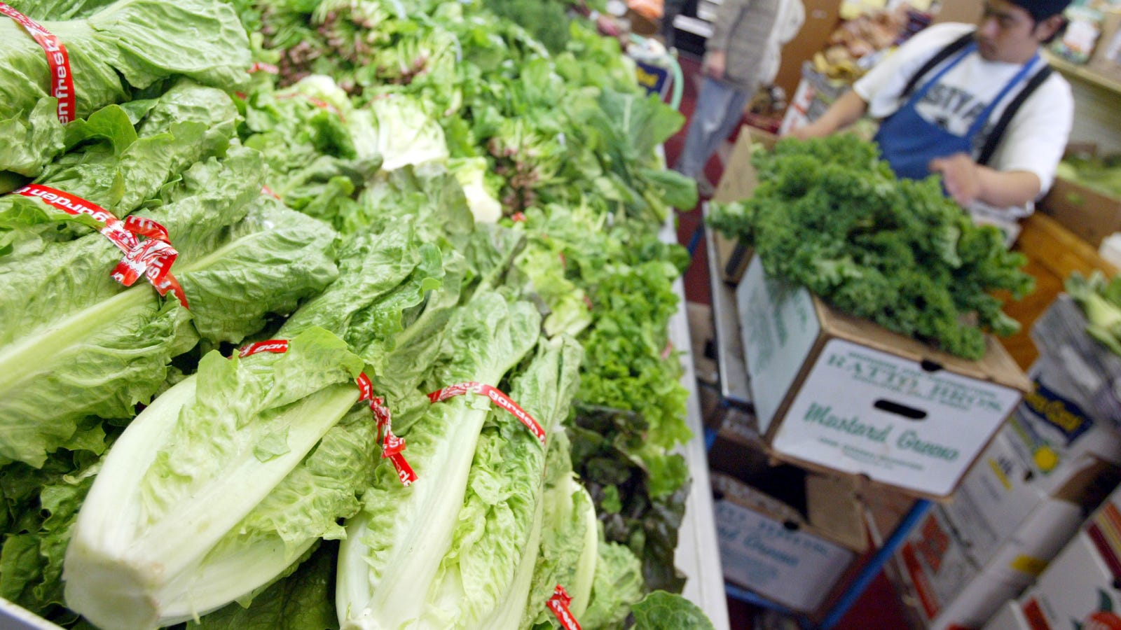 CDC: Throw Your Romaine Lettuce in the Trash Right Now