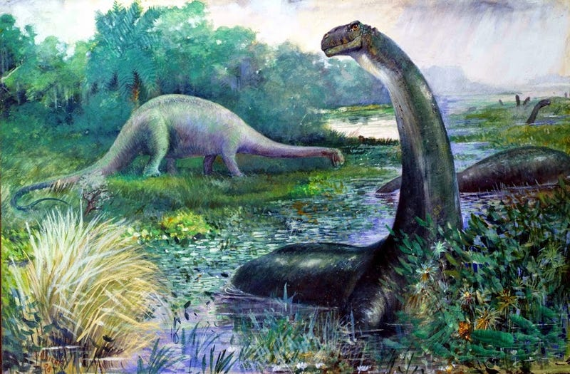 Illustration for article titled Brontosaurus Should Be Reinstated As A Distinct Dinosaur, Say Scientists