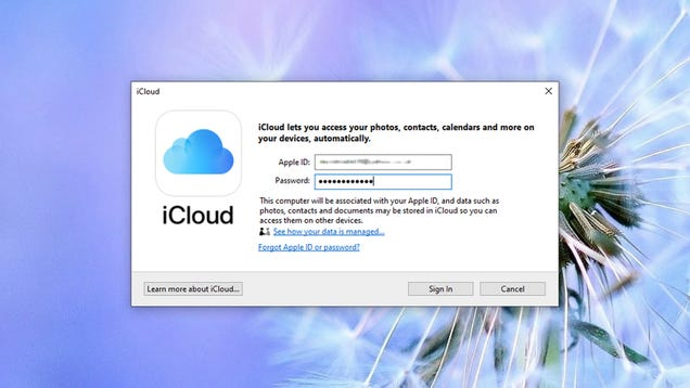 How to Sync All of Your iCloud Passwords and Data to Windows