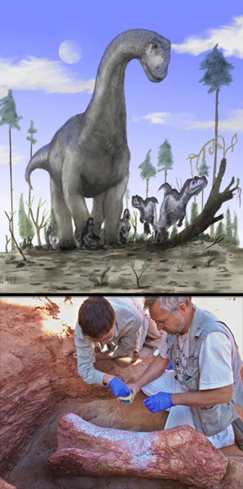 Illustration for article titled Two New Mega-Dinosaurs Discovered in Morocco