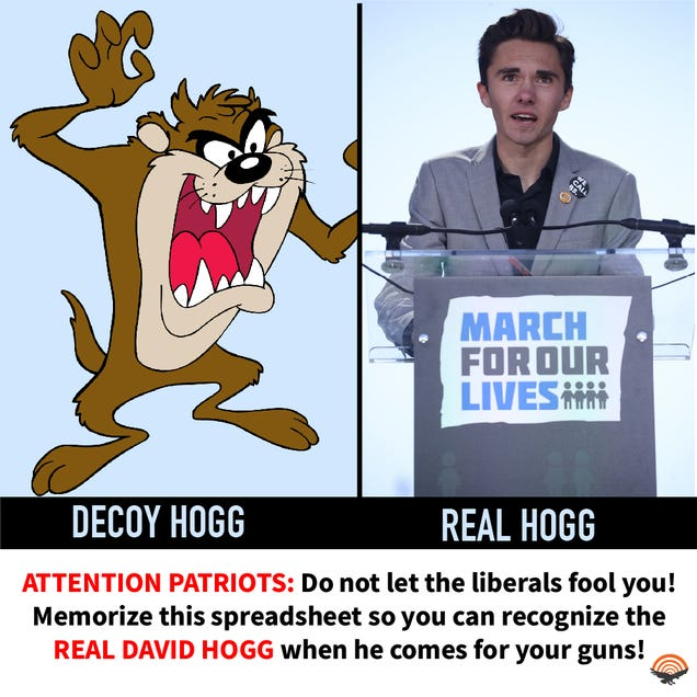 ATTENTION PATRIOTS: BEWARE OF THE REAL DAVID HOGG!