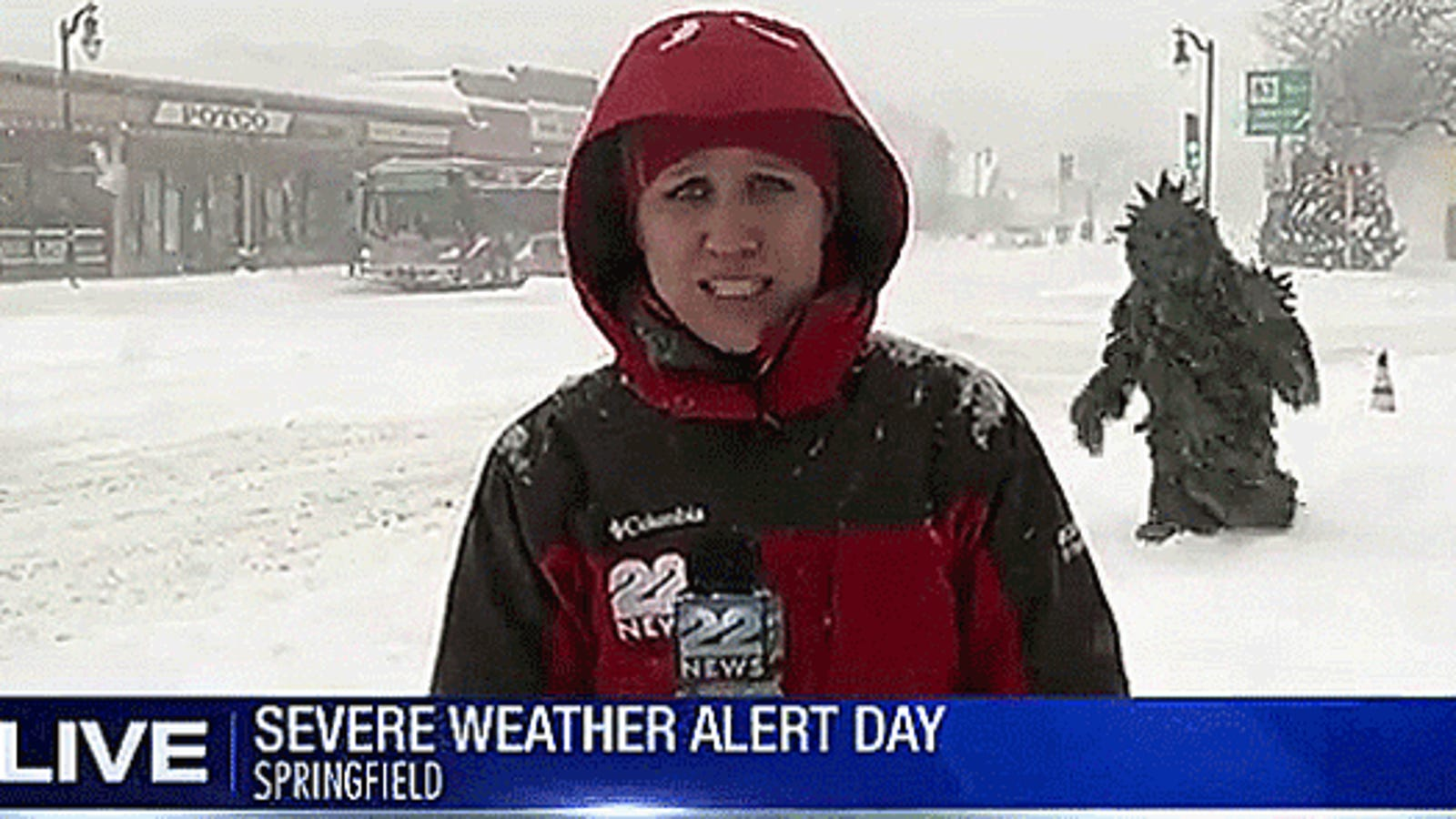 Live Winter Weather Report Interrupted By Person In 'Pot