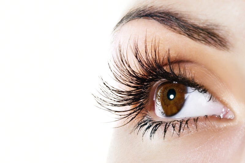 There Is A Mathematical Formula That Dictates How Long Your Lashes Are