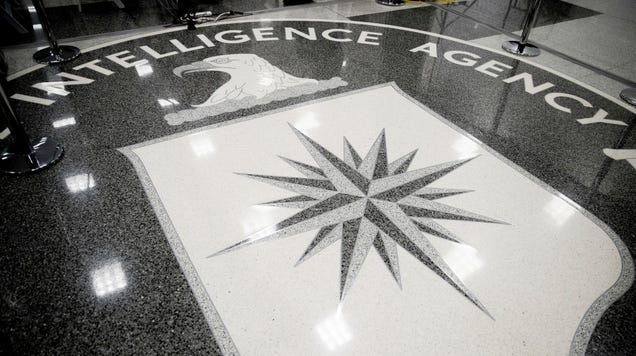 Alleged CIA Leaker Joshua Schulte Was Made Scapegoat for Being  a Pain in the Ass,  Defense Argues