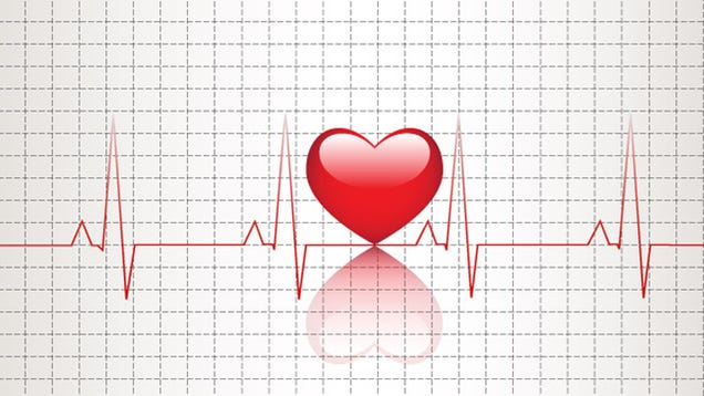 Heartbeats , The - Animal Crackers