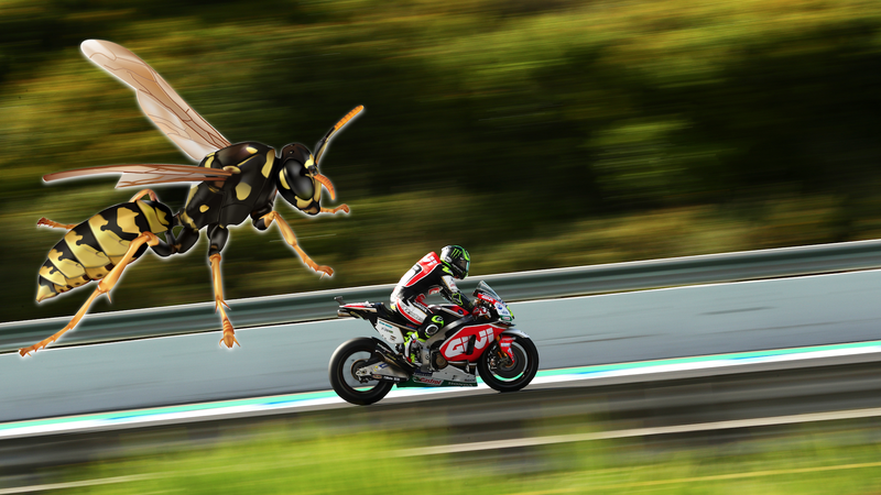 Cal Crutchlow during final practice, before the wasp got to him. Photo credit: Dan Istitene/Getty Images