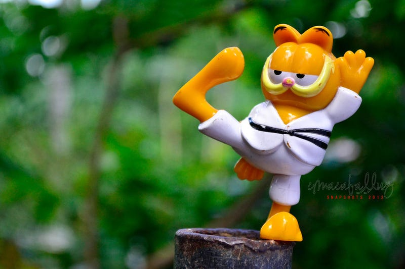 Illustration for article titled Show Off Your Photography Prowess With Karate Garfield