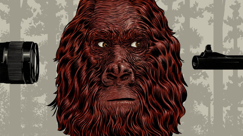 To Kill or to Capture Bigfoot: The Great Cryptozoological Debate