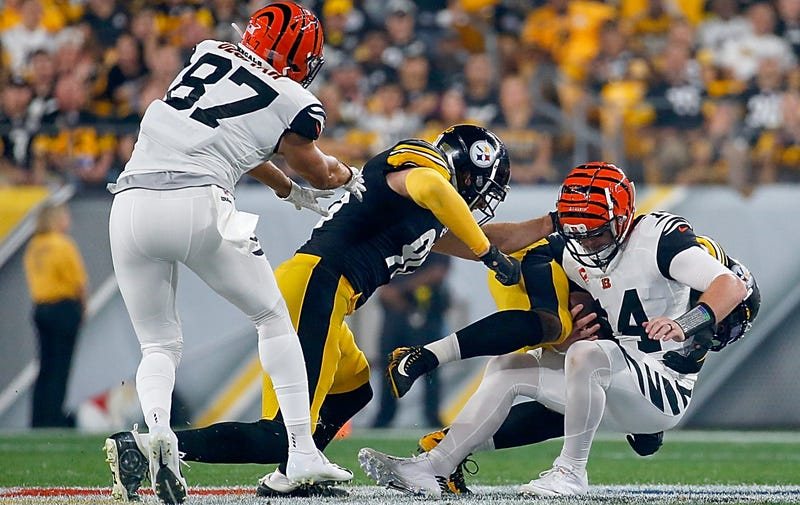 The Steelers Took Turns Suplexing Andy Dalton Into A Toilet