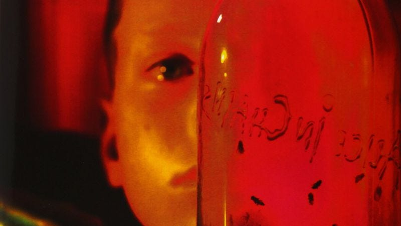 Illustration for article titled With Jar Of Flies, Alice In Chains unleashed an accidental masterpiece