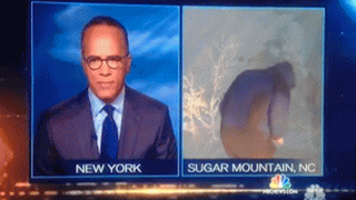 NBC screenshot