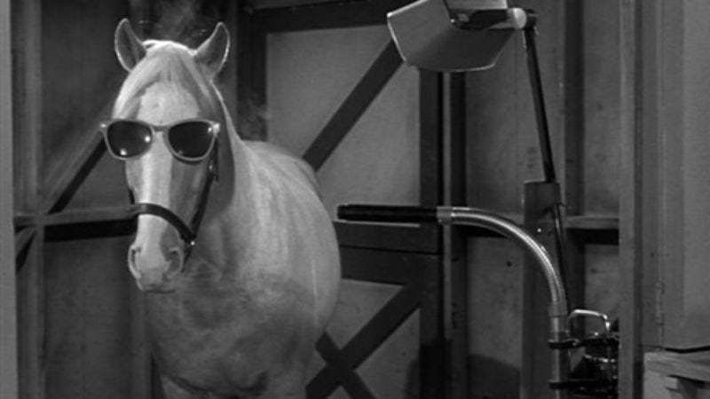 Illustration for article titled Mister Ed will be a live-action/CGI family film, announces man mouthing words that resemble human speech