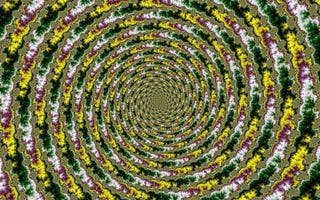 Illustration for article titled TAY Time Chat: Spirals