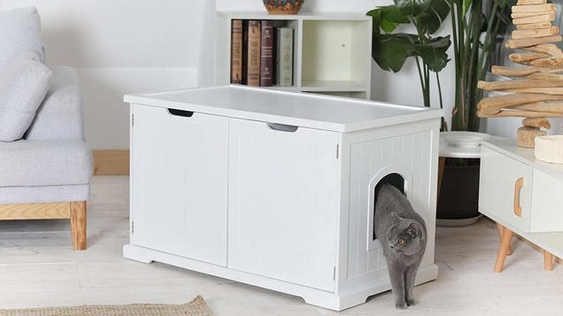 Disguise Your Cat's Litter Box With This Bench, Now Down to Its Best Price Ever