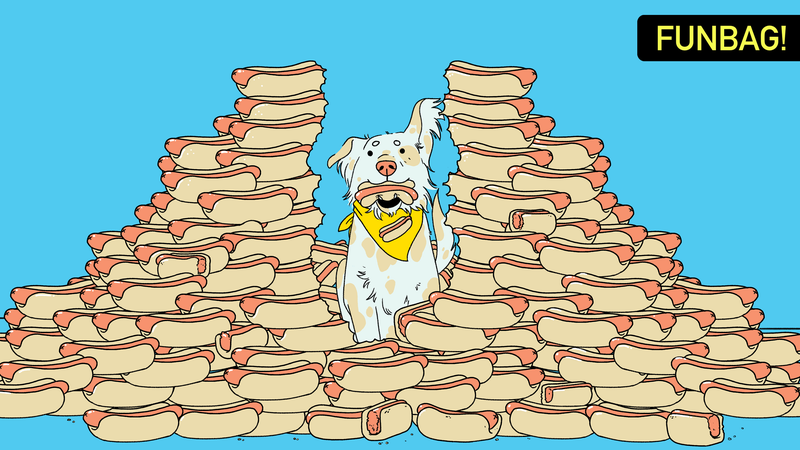 Illustration for article titled Could A Dog Win The Hot Dog Eating Contest?