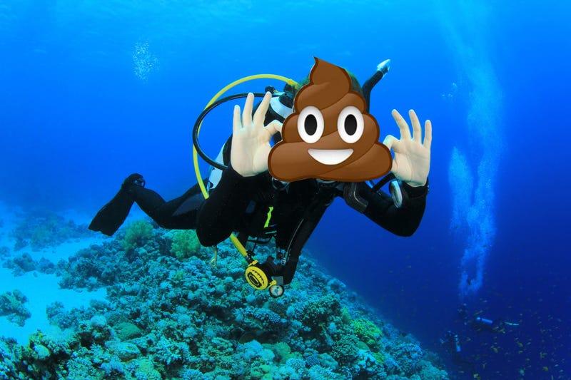 Illustration for article titled scooba diver