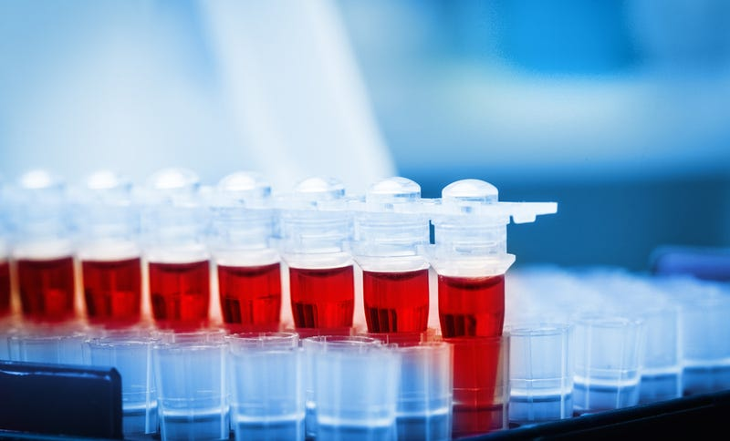 Illustration for article titled Un nuevo test de sangre permite detectar todos los virus que has tenido