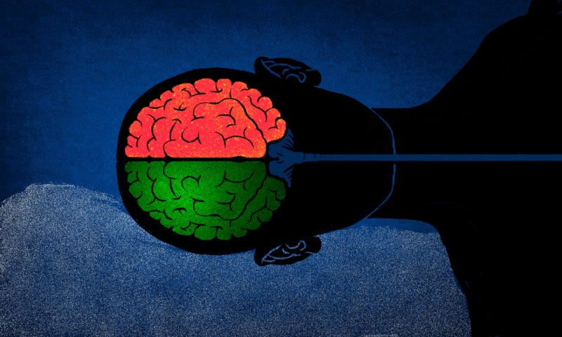Illustration for article titled Qué le pasa a tu cerebro cuando se emborracha y consume cannabis al mismo tiempo