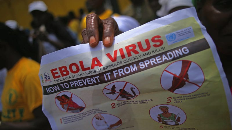 Illustration for article titled The CDC Says Flying Is Mostly Risk-Free From Ebola Exposure