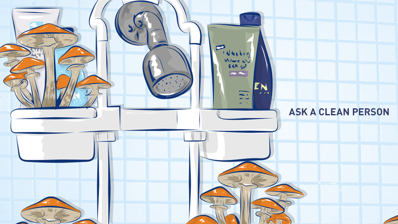Illustration for article titled There's A Mushroom Growing In My Tub!