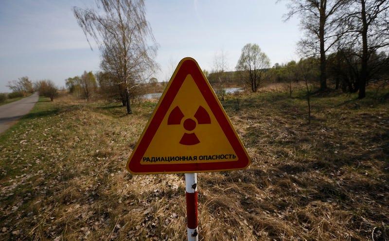 Aviso en la zona de exclusión de Chernóbil. (Foto: Sergei Grits / AP Images)