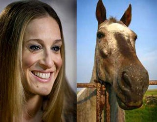 Illustration for article titled Comparing SJP To A Horse Does Not Add To The Conversation