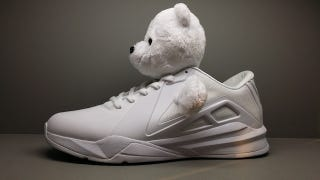 Illustration for article titled There Are No Pandas On Metta World Peace's New Panda Shoes