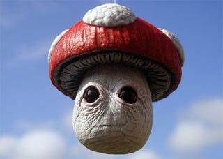 Illustration for article titled This Super Mario Bros. Mushroom May Be *Too* Realistic