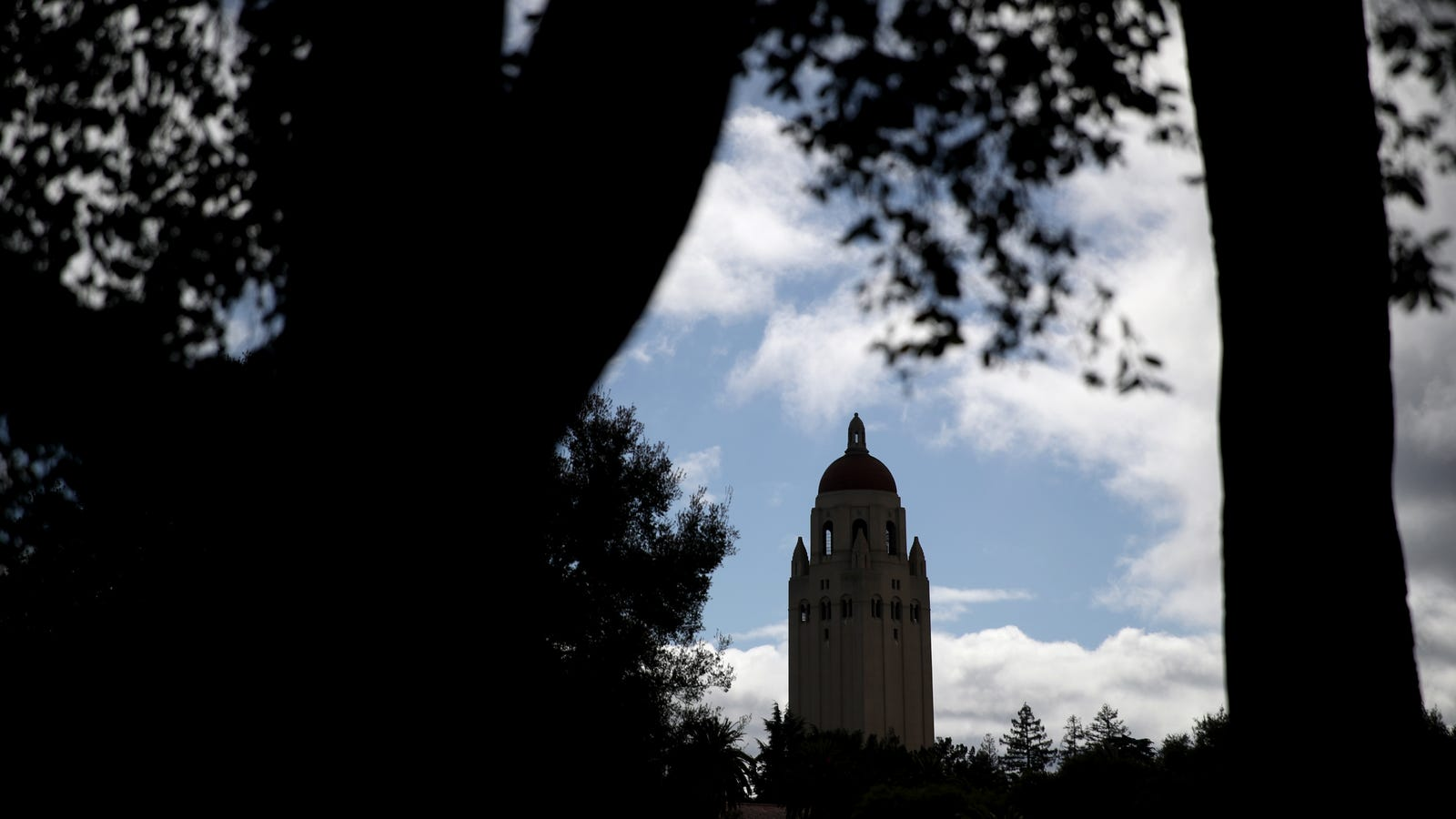 Stanford's New Institute to Ensure AI Is 'Representative of Humanity' Mostly Staffed by White Guys