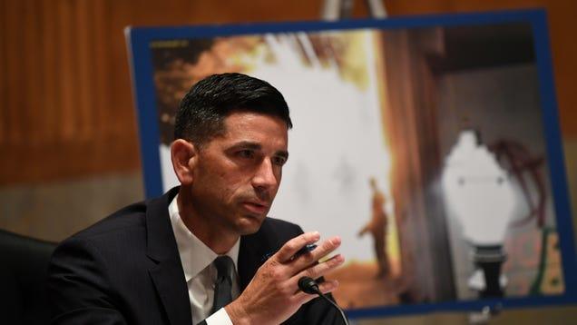 Whistleblower: DHS Goons Whitewashed Intel to Downplay White Supremacist Threat