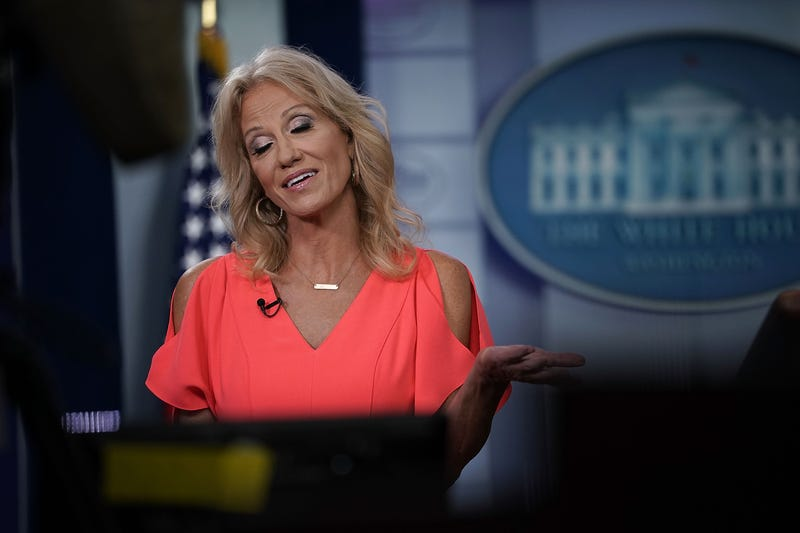 Illustration for article titled Is Kellyanne Conway the White House Snitch?