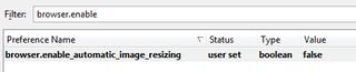 Illustration for article titled Firefox Tweak:  Stop resizing large images