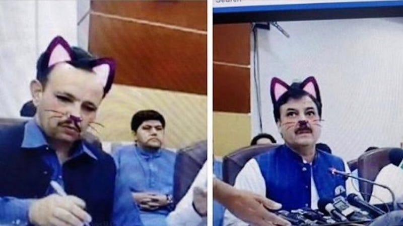 Illustration for article titled Funcionarios del gobierno pakistaní olvidan apagar el filtro de gato en la conferencia de un ministro en Facebook Live