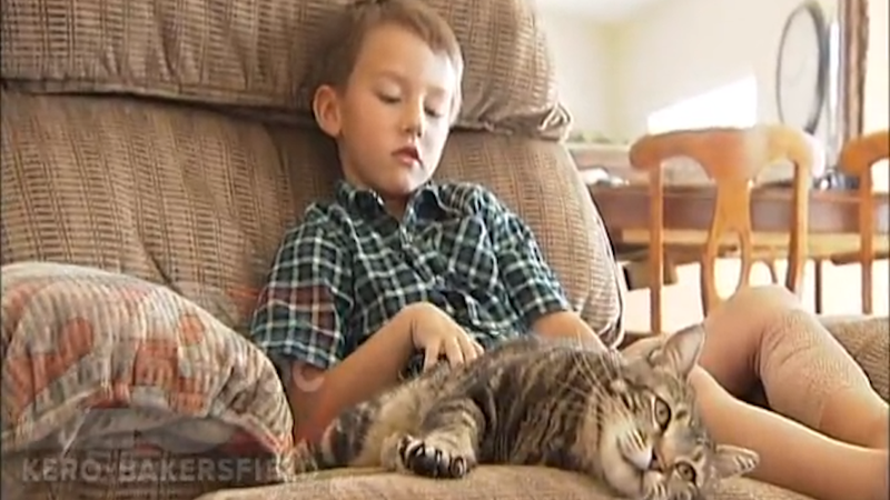Illustration for article titled Amazing Cat That Rescued Boy Gives First Television Interview
