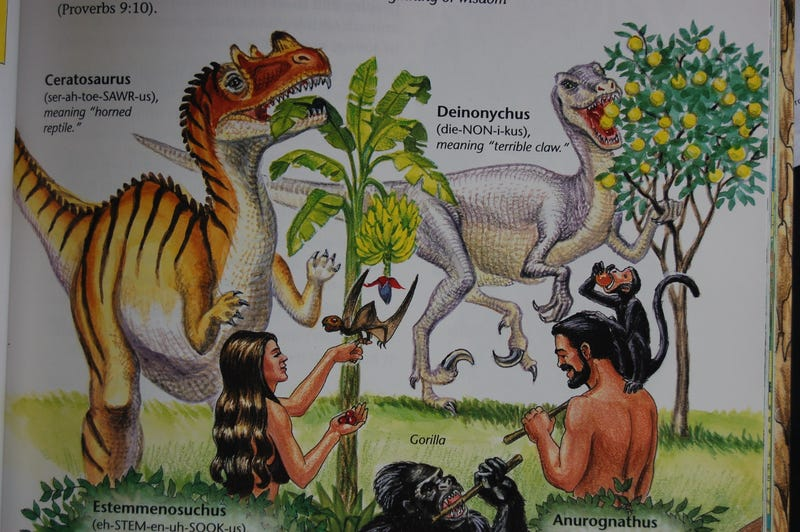 Illustration for article titled Confessions Of A Former Young Earth Creationist